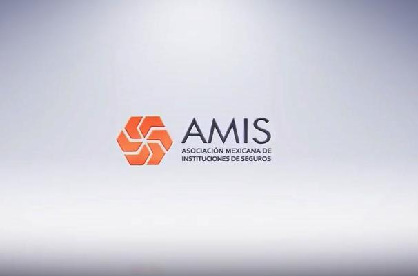 Nuevo presidente en AMIS