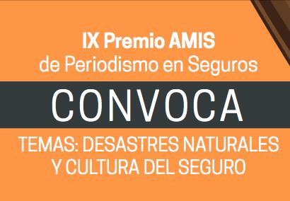 IX Premio AMIS